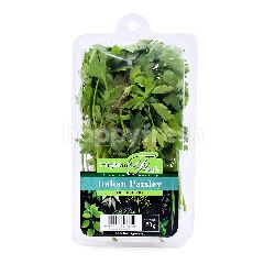 PAPRIKA FARM Italian Parsley