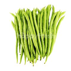 FOOD FOREST FARM French Bean