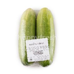 Big C Large Cucumber