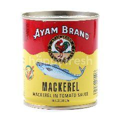 Ayam Brand Mackerel In Tomato Sauce