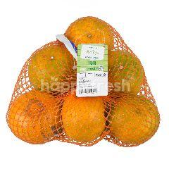 เทสโก้ ส้มโชกุน