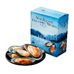 Food Diary Nz Greenlip Half Shell Mussel Size L