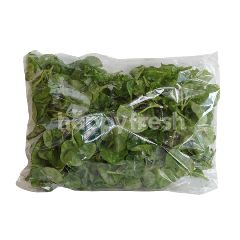 Brazillian Spinach