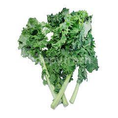FreshBox Kale