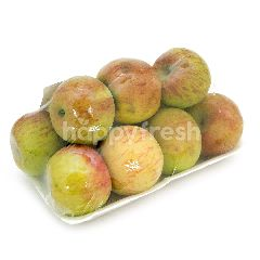 Apel Cherry Malang