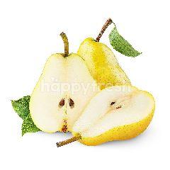 Fuyun Ya Pears
