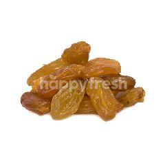 Premium Jumbo Golden Raisins