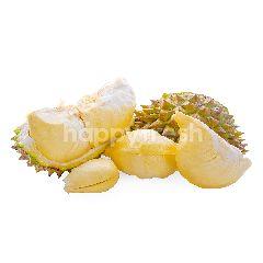 Durian Musang King Kupas