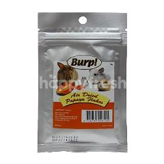 Burp! Air Dried Papaya Flakes 15g