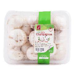 Choice L Jamur Baby Champignon