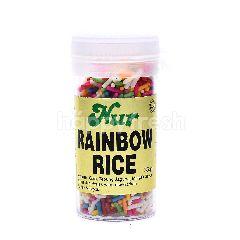 NUR Rainbow Rice