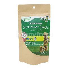 LOVE EARTH  Sunflower Seeds Crackers