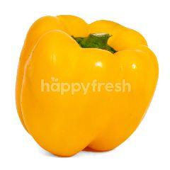 Paprika Kuning Organik