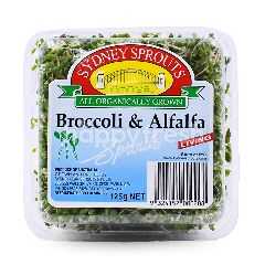 Sydney Sprouts Broccoli And Alfalfa Sprouts