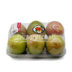 Local Passion Fruit (Buah Markisa) ~600g