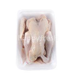 Ayam Kampung Besar Utuh