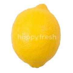 Imported Lemon