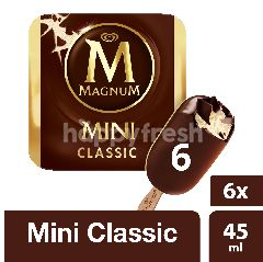 Wall's Magnum Mini Classic Ice Cream (6 Pieces)