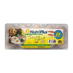 Nutriplus Organic Selenium  Fresh Eggs L10
