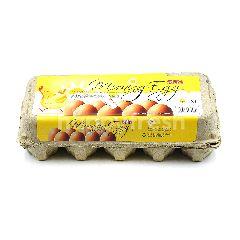 SHH Morning Egg M Size (10 Eggs)