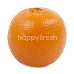 Navel Orange (8 Pieces)