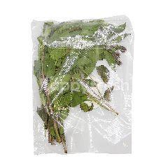 Edsam Basil Leaves (Daun Selasih) ~50g