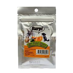 Burp! Air Dried Sweet Honeydew Melon 12g