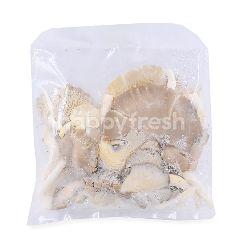 DMI Grey Oyster Mushroom