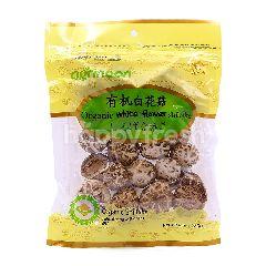 Agrinoon Organic White Flower Shiitake