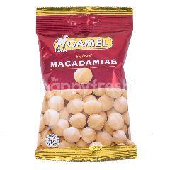 Camel Macadamia Asin