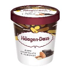 Haagen-Dazs Dark Chocolate & Almonds Ice Cream