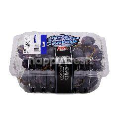 One Selection Black Seedless Grape