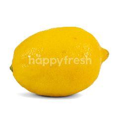 Lemon USA