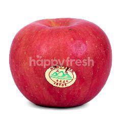 Apel Wangsan Besar