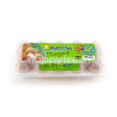 Nutriplus Fresh Eggs With Omega-3 (M Size)