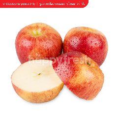 บิ๊กซี แอปเปิ้ลเอ็นวี่