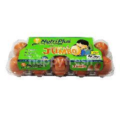 Nutriplus Jumbo Eggs