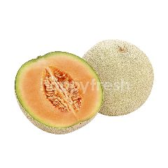 Joy Melon Jepang