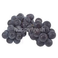 Cameron Kyoho Grapes