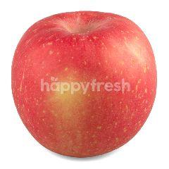 กูร์เมต์ มาร์เก็ต แอปเปิ้ลฟูจิ