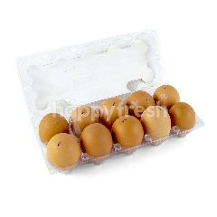 SPP Special Domestic Chicken Egg