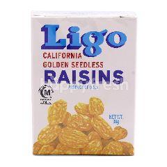 Ligo California Garden Seedless Rainsins