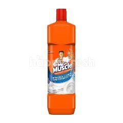 Mr Muscle Bathroom Cleaner