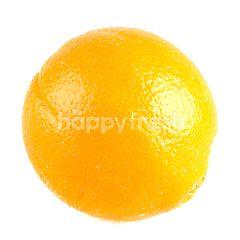 เอเบสท์ ส้มซันคิสท์