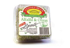 Sydney Bean Alfalfa & Onion Sprouts