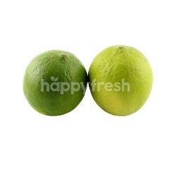 Small Lime Prepack