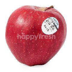 Washington Red Del Apple