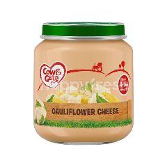 Cow & Gate Cauliflower 4 Months