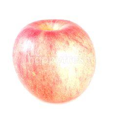 แอปเปิ้ลฟูจิจีน เบอร์ 28