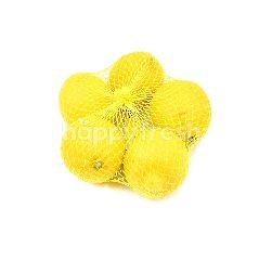 UM Lemon (5 Pieces)